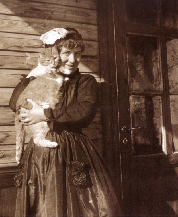 Edith-Södergran-cat