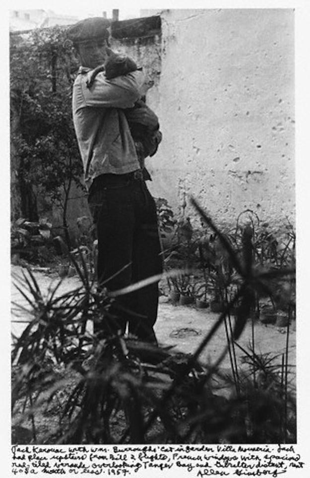 Jack-Kerouac-cat