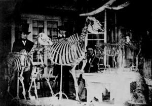 edgar-allan-poe-1840-Natural-sciences-academy-