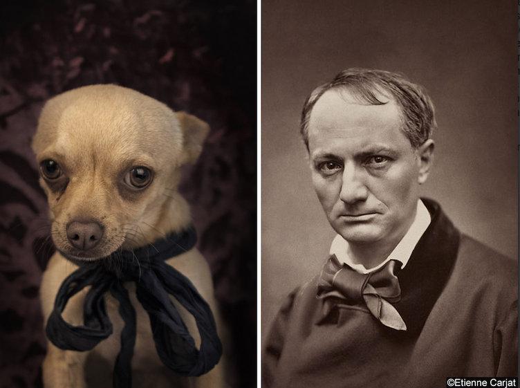 Charles-Pierre-Baudelaire-ve-kopek-portresi