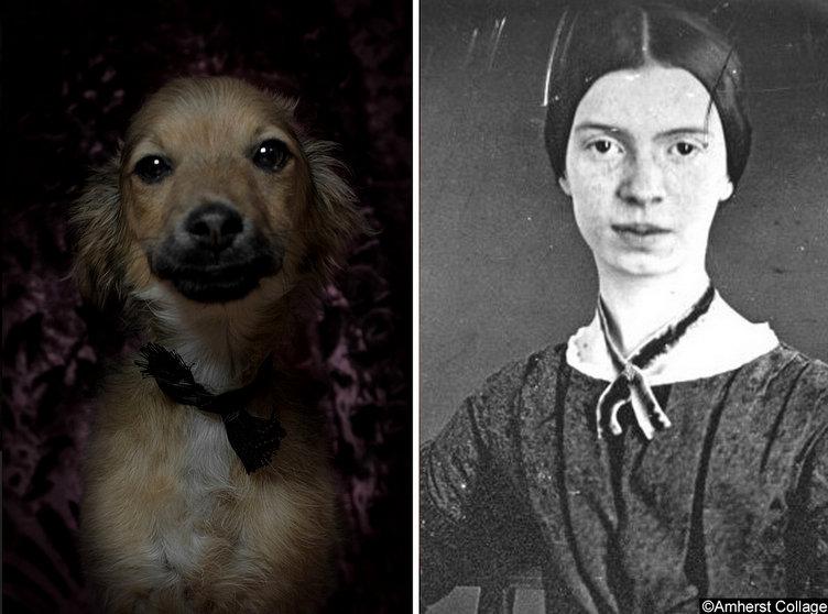 Emily-Dickinson-ve-kopek-portresi