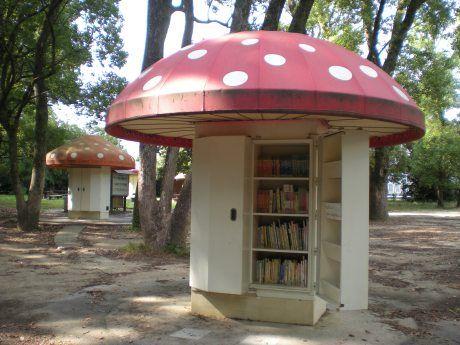 Kyoto-botanical-gardens-library-mantar-kutuphaneler-japonya