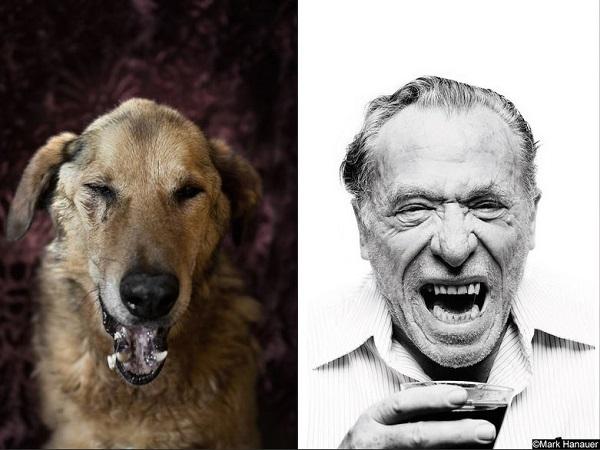 charles-bukowski-ve-kopek-portresi